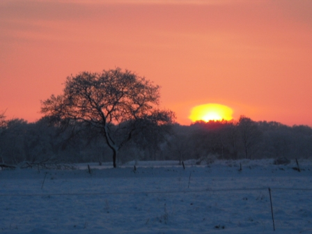 Sonnenuntergang im Winter in Brill bei Dunum